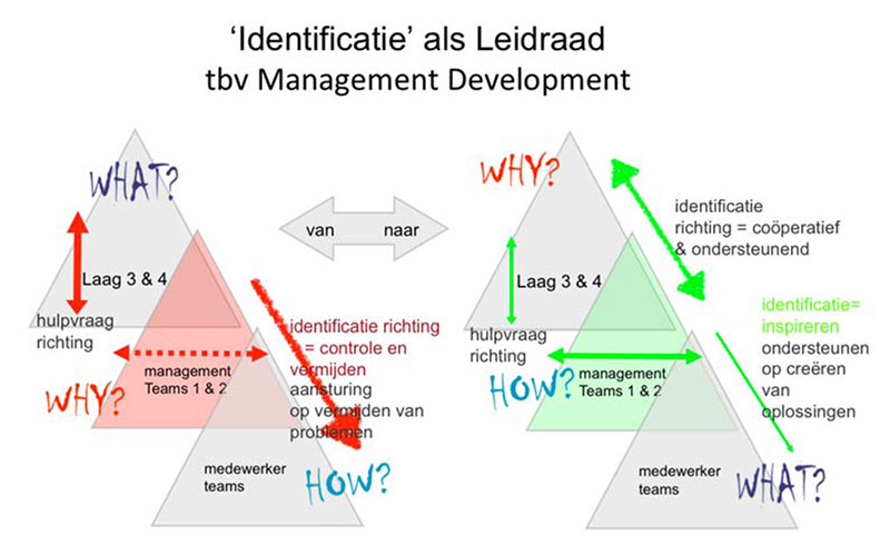Graphical representation in the form of triangles of Managemengt Development through Identification
