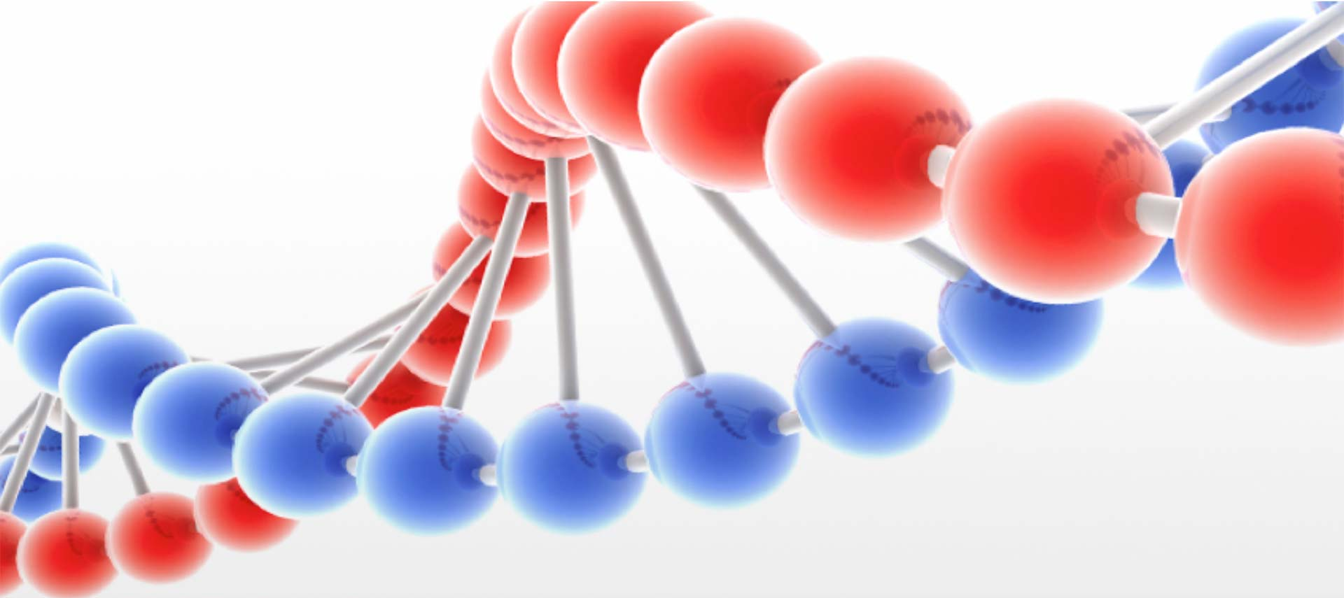 red and blue DNA string